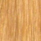Koppery Blonde